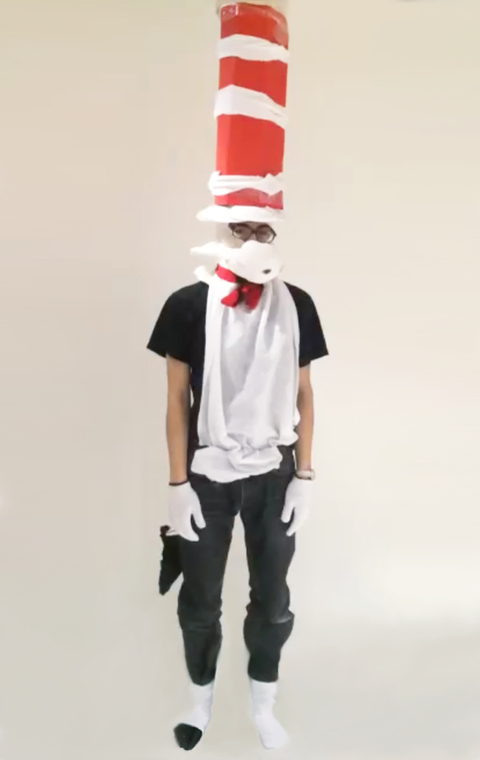 What Ever It Takes Cat in the Hat