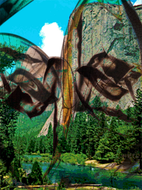 Alberto Mena Yosemite Archival pigment print on 100% cotton