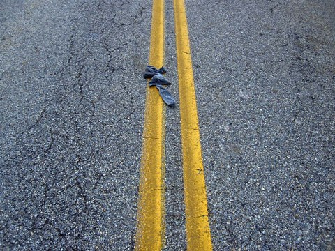 Alex Branch Road Kill
