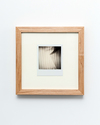 Auction Works to Date 2017 Polaroid in maple frame with UV glass