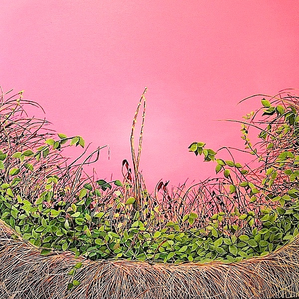 "Allison Green Thicket 36""x36"""
