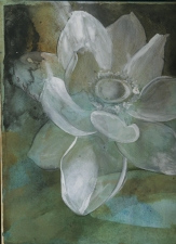Amie Oliver Botanicals charcoal and acrylic on mdf panel