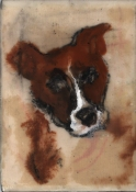 "ABMacD Dogs 7"" x 5"""