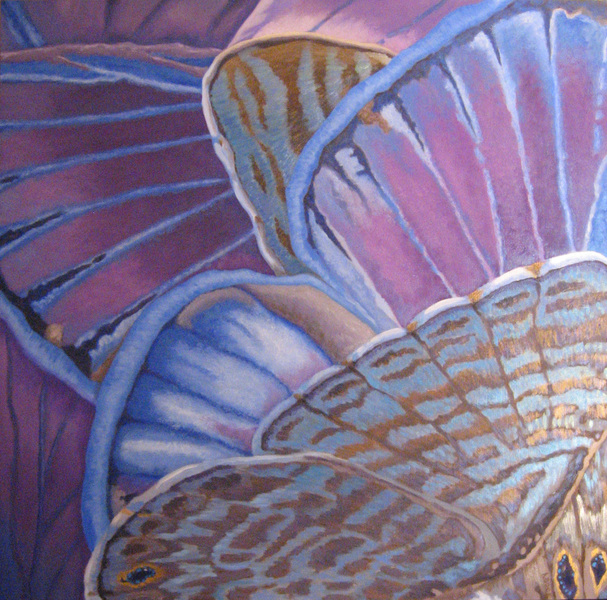 Amy Bock Pollinators: Butterflies & Moths Oil and mica on panel