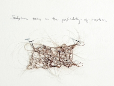 Amy Finkbeiner Shrines and Relics Crocheted hair and pencil on wall