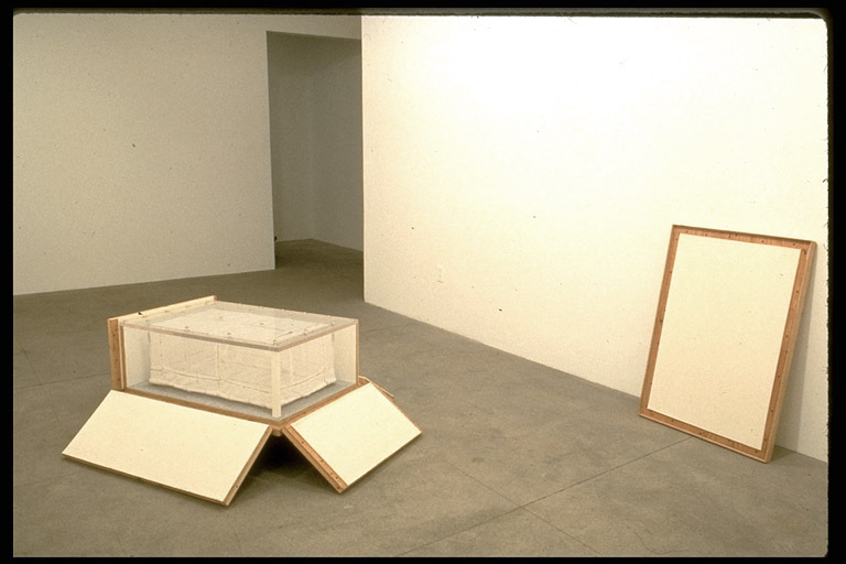 Derek Eller Gallery, NYC plywood, plexiglass, luggage cart, linoleum, felt, wood, net, bobbinette, rope, wire, hardware