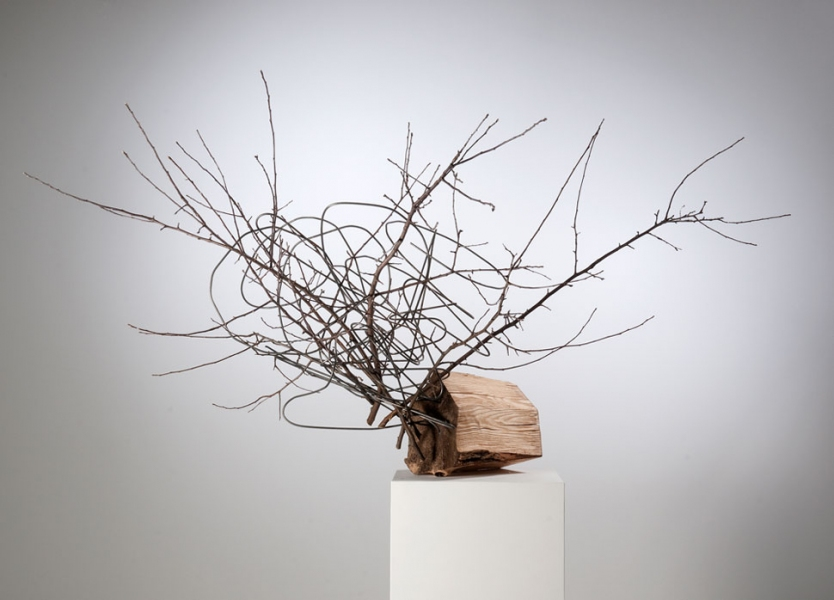 Recent Work Extruded with Branches (Thought House Series)