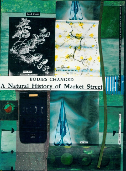 THE NATURAL HISTORY OF MARKET STREET  THE NATURAL HISTORY OF MARKET STREET