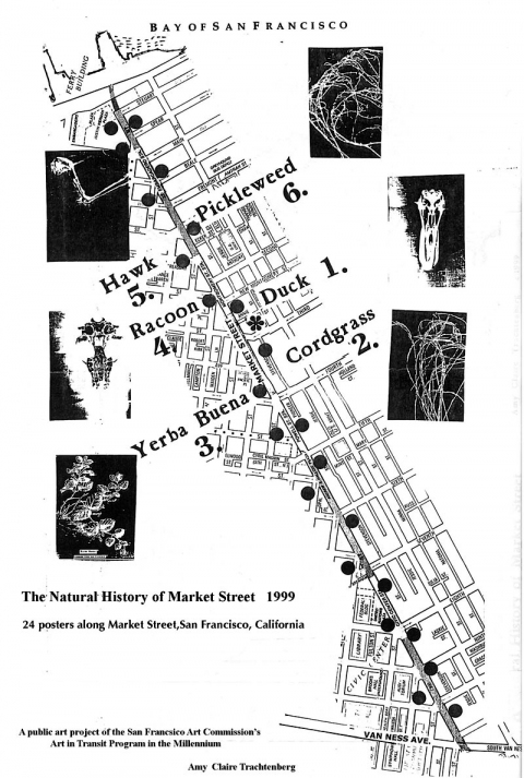 THE NATURAL HISTORY OF MARKET STREET Natural History of Market Street