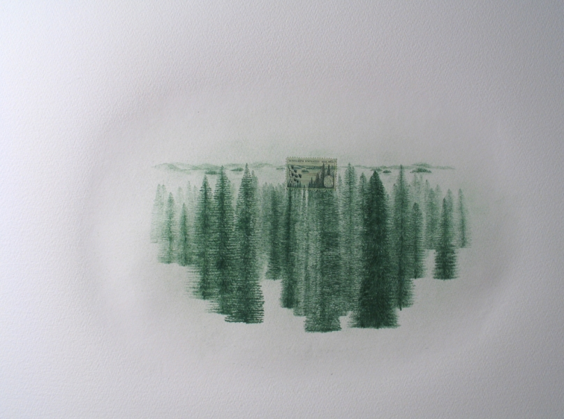 Works on paper USA: Minnesota Statehood (Pine Trees)