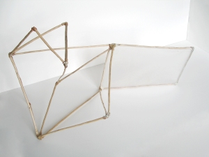a     n     d     r     e     w            z     a     r     o     u 2011 wood, plastic, copper wire + liquid nails