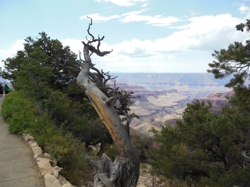 National Park Photos 2012 Grand Canyon National Park, AZ