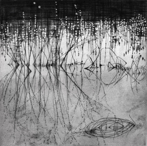 Anita S. Hunt   Reverberations etching and spit bite aquatint