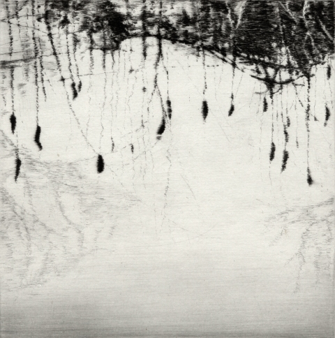 Anita S. Hunt   Reflections drypoint and chine collé