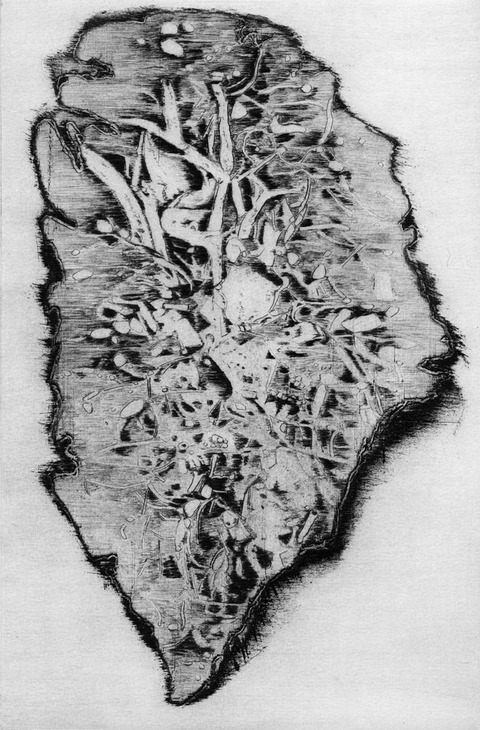 Anita S. Hunt   Island etching, drypoint on copper