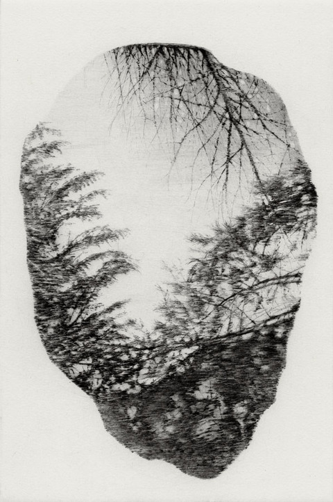 Anita S. Hunt   Puddles: editions drypoint