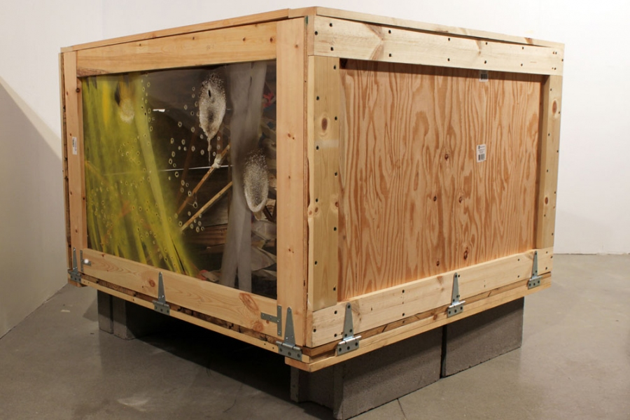 2011 Untitled (Towercrate, unopened)
