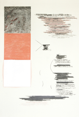 Anne Gilman Assorted works on paper 2013 pencil, paint, and acrylic medium on paper