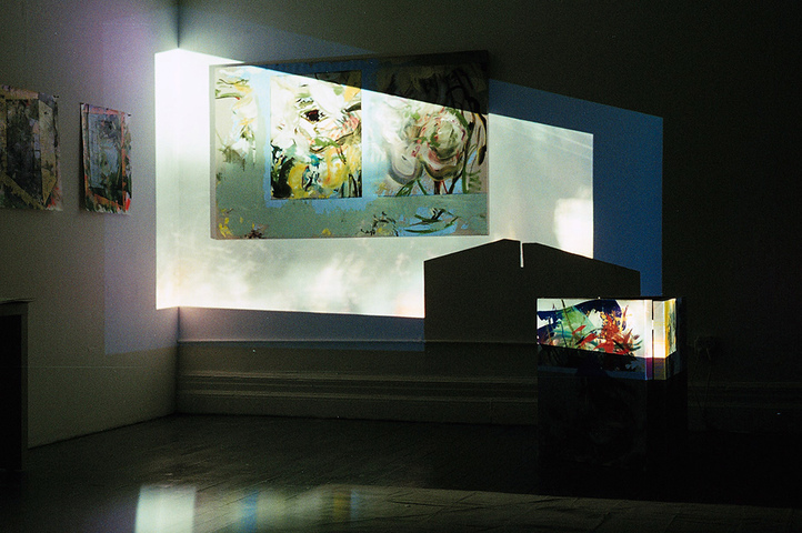 "Anne Sherwood Pundyk 2010. Single-channel video (color, sound), 6:38 min. Projected to 60"" height on painting installation. ""My Atlas: Lindsay/A Report to an Academy."""