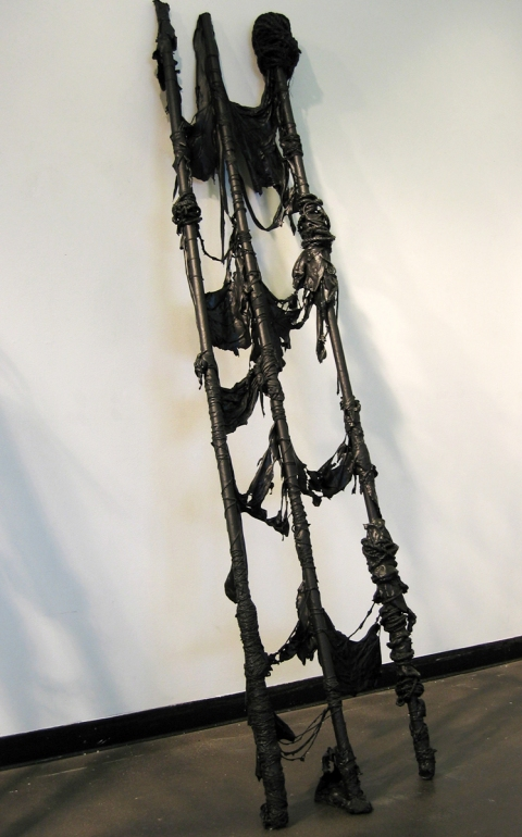 Ladders mixed media: rope and latex paint