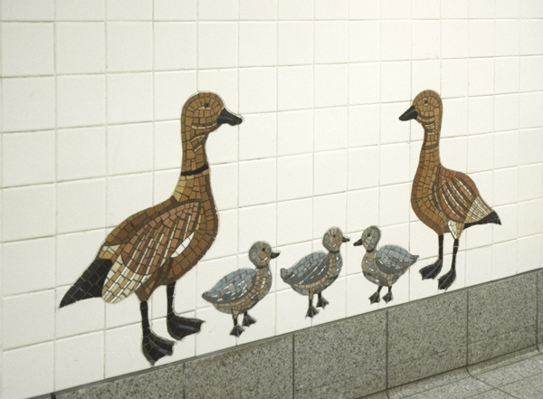 5th Avenue R,N,Q subway station, NYC Urban Oasis- Ducks (5th Avenue, R,N,Q subway station, NYC)