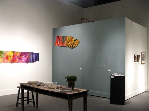 "ANN STODDARD 2011 ""Collecting Installation"""