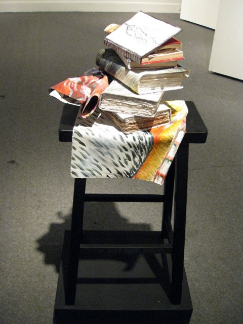 "ANN STODDARD 2011 ""Collecting Installation"" mixed media"