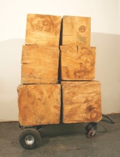 Arcadia Now Works in the Exhibition white pine and hand truck