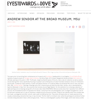 Andrew Sendor The Broad MSU, November 7, 2015 - April 24, 2016