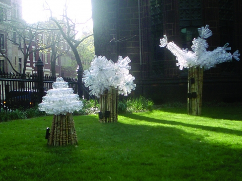 Barbara Lubliner Tree Gems in NYC plastic bottles, bamboo, jute rope, solar light