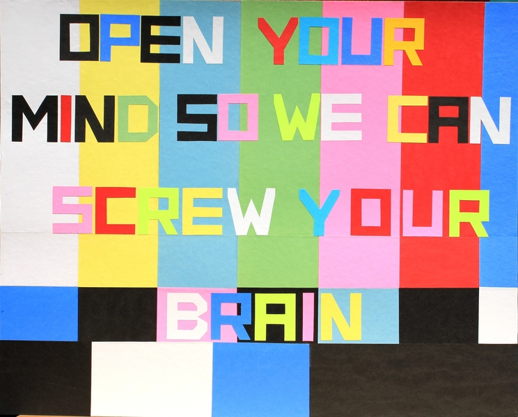 "I  SURVIVED INFORMATION "" OPEN YOUR MIND SO WE CAN SCREW YOUR BRAIN ""."