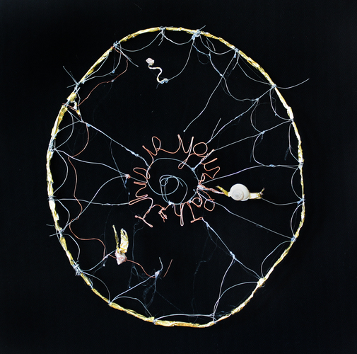 Branden Koch webs and oracles copper and steel wire, shells, gold foil