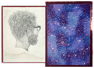 Brian Hitselberger Diptychs 2014 Graphite, oil paint on found surfaces