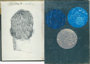 Brian Hitselberger Diptychs 2014 Graphite, Oil on found surfaces