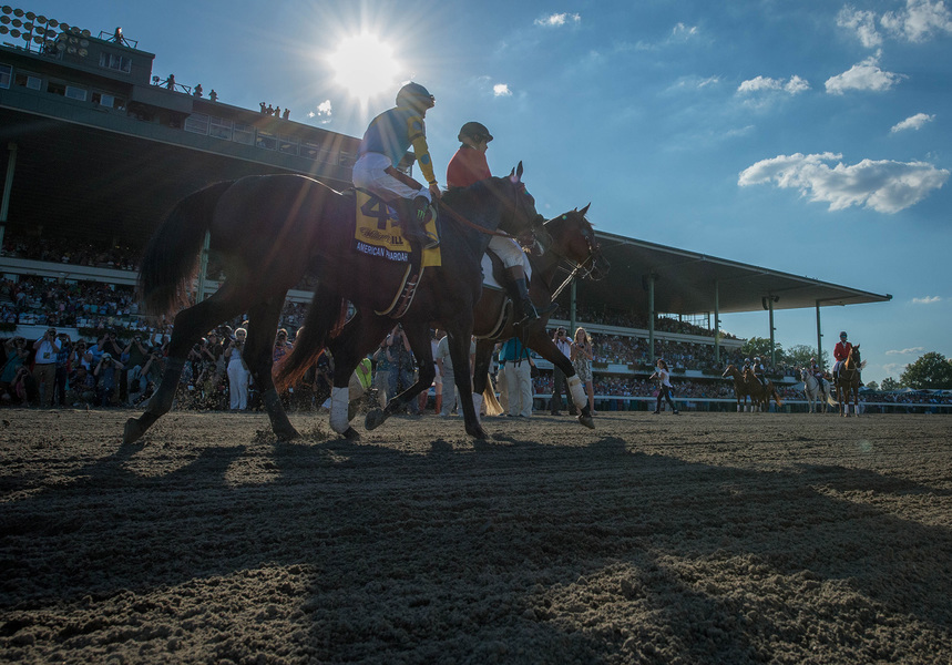 Sports American Pharoah wins the 2015 Haskell at Monmouth Park
