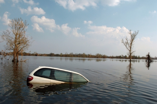 Aftermath Of Hurricane Katrina - St. Bernard Parish