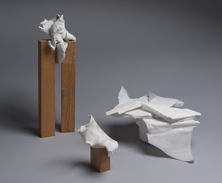 carol greenwood SG plaster, wood, mixed media