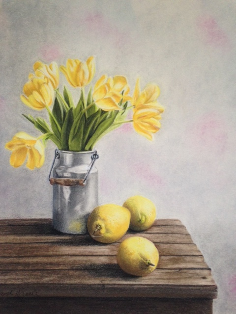 Carol Gromer Fine Art Still Lifes Conte and Charcoal on Paper