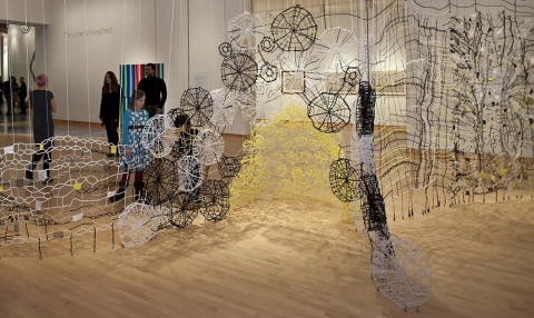 Caroline Lathan-Stiefel  Acanthus Climbing (2012) pipe cleaners, fabric, plastic, yarn, lead weights, pins, thread