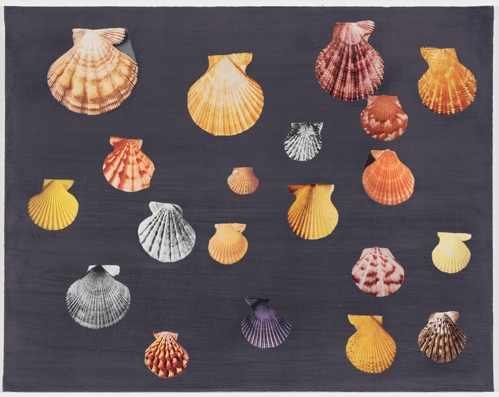 Collage Yellow Scallops