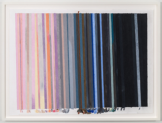 Carrie Gundersdorf Recent Work, 2012 - present colored pencil on paper