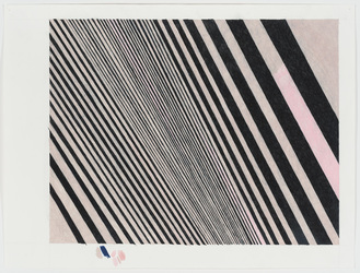Carrie Gundersdorf Drawing and Paintings colored pencil on paper