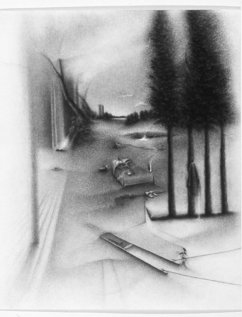 Charlotte Schulz Early Drawings<br>1999-2002 charcoal on paper