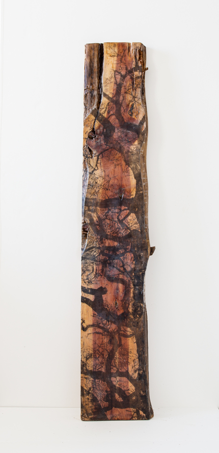 Christine Shannon Aaron Sculptural Work lithographic monoprint, asian paper, encaustic on wood