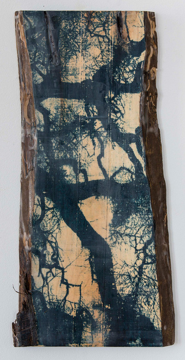 Christine Shannon Aaron Sculptural Work lithographic monoprint, encaustic, wood