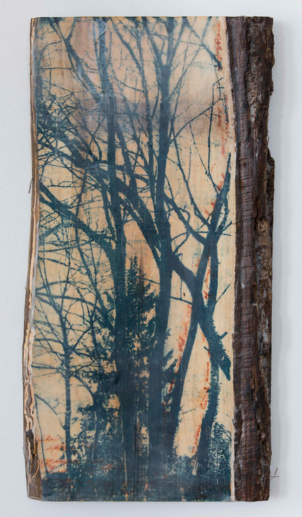 Christine Shannon Aaron Sculpture lithographic monoprint, encaustic on wood