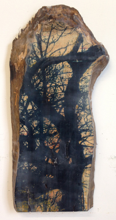 Christine Shannon Aaron Sculptural Work lithographic monoprint, encaustic on wood