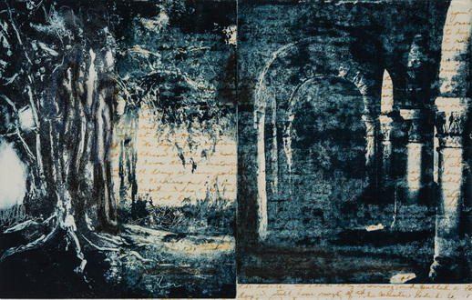 Christine Shannon Aaron Work on Paper lithographic monoprint. asian paper, chine-colle