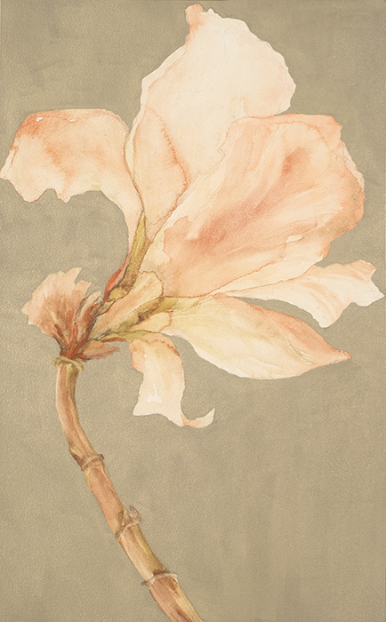 CHRISTINE NEILL Watercolors 2006-2015 Watercolor on Clayboard