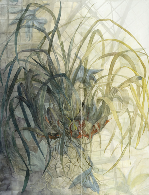 "Mixed Media Paintings 2011-2006 Orpheus' Orchid, 2011, Watercolor & Archival Ink Jet on Paper, 47"" x 36  (two panels)"